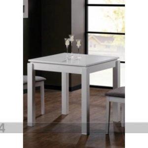 Bl Ruokapöytä Caira 75x75 Cm