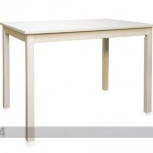 Go Ruokapöytä Loreta 75x110 Cm