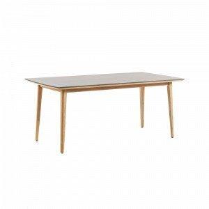 Julia Khloe Pöytä Eukalyptuspuuta / Polysementtiä Harmaa 200x100 Cm