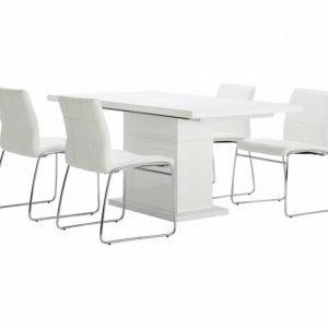 Kulmbach Pöytä 160 + 4 Viskan Tuolia Valkoinen