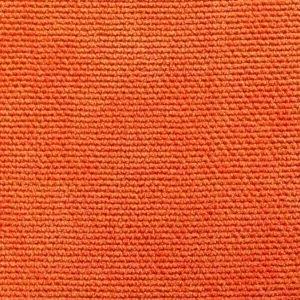 Penkki Oranssi