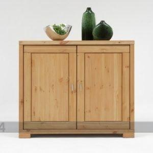 Pinus Lipasto Guldborg Mänty