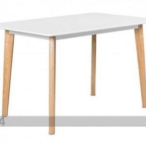 Ts Ruokapöytä Nostalgia 80x120 Cm