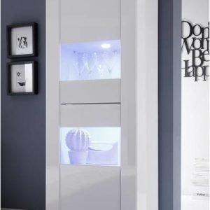 Vitriinikaappi Moderni 162x61x43 cm kapea valkoinen