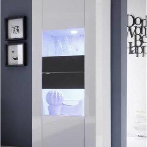 Vitriinikaappi Moderni 162x61x43 cm kapea valkoinen/wenge