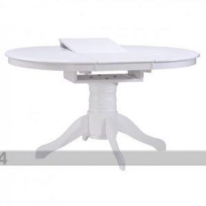 Wood Jatkettava Ruokapöytä Albany 106-150x106 Cm
